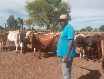 Man quits insurance job to go farming