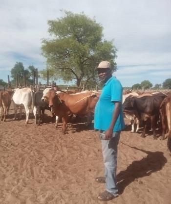 Man quits insurance job to go farming