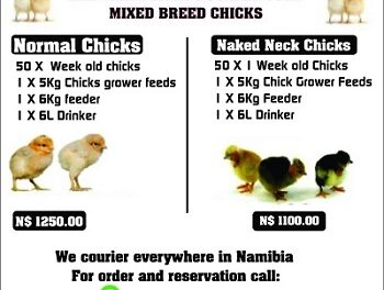 Tona Poultry