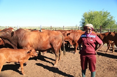 Passionate young farmer ploughs her way to success