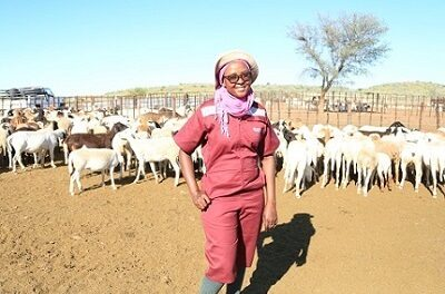 Meat farmers urged to understand benefits of crossbreeding