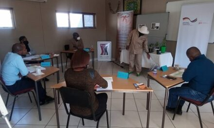 20 Khomas entrepreneurs pitch for resilience grants