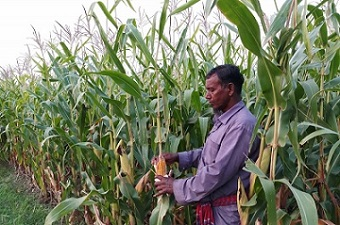 Transforming agribusinesses into generational enterprises is critical to food security